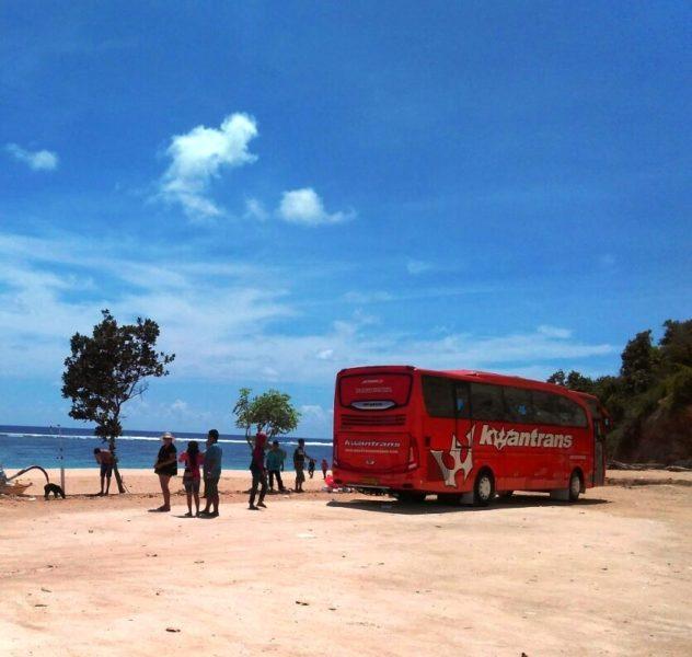 sewa-bus-pariwisata-malang-6
